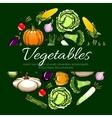 Vegetables emblem design for banner vector image