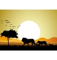 Beautiful Lion family silhouettes with giant moon vector image vector image