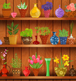 rustic kitchen interior with herbs and flowers vector image vector image