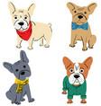 cartoon character french bulldog vector image