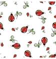 Ladybug White Pattern vector image