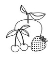 white background of monochrome fruits apple vector image