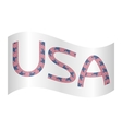 Word USA made from american flags waving on white vector image
