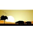 couple rhino silhouette vector image vector image