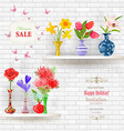 shelves on a wall of white brick with lovely vector image vector image