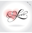 Love hand lettering vector image