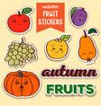 autumn fruit stickers vector image