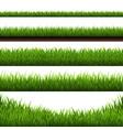 grass border big vector image vector image