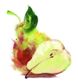 drawing pear with a slice vector image