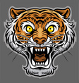 Roaring tiger in classic tattoo style vector image