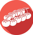 Cherry Tomatoes Icon vector image vector image