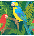 Seamless pattern with palm trees leaves and parrot vector image vector image