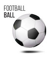 football ball isolated soccer ball vector image