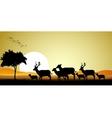 deer family silhouette vector image