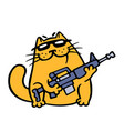 cat gangster with assault rifle vector image