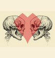 couple skulls and heart symbol vector image
