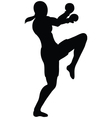 female knee outline vector image