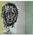 Sketch of a big male African lion vector image vector image