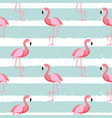 cute seamless flamingo pattern vector image