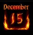 Fifteenth december in calendar of fire icon on vector image