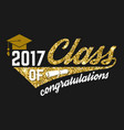 Class of 2017 badge vector image