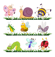 cartoon Insects set vector image