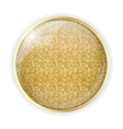 Golden Glossy Application Icon Template vector image