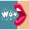 Open mouth and WOW Message vector image
