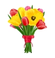 Tulip flower bouquet vector image