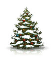 christmas pine tree with snow and balls vector image