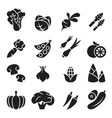 vegetable icon set 2 vector image