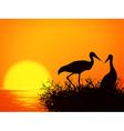 Stork Nest vector image