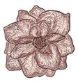 Vintage floral of blooming flowers vector image