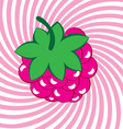 ripe raspberries background vector image