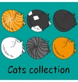 Set of six funny cats isolated on turquoise vector image