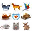 Pets icons set vector image vector image