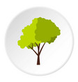 Green tree with fluffy crown icon circle vector image
