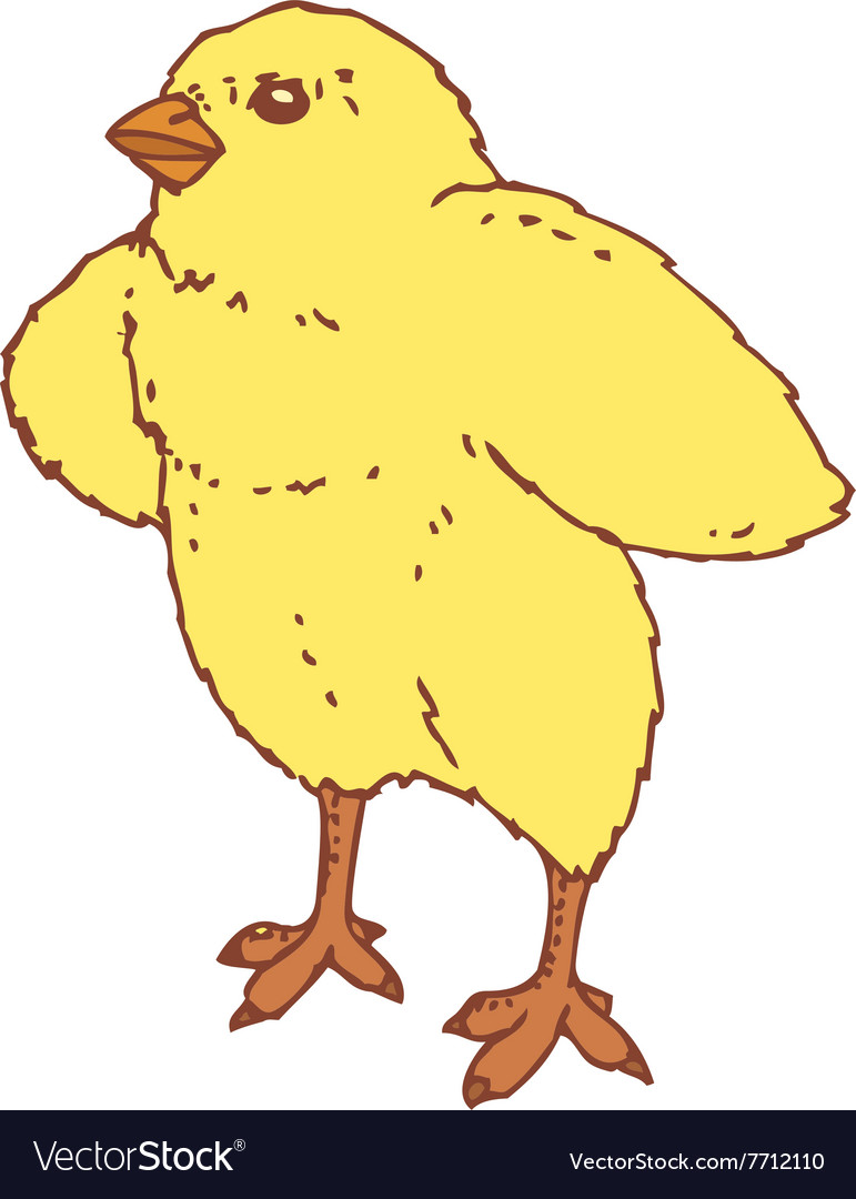 Cute little chicken vector