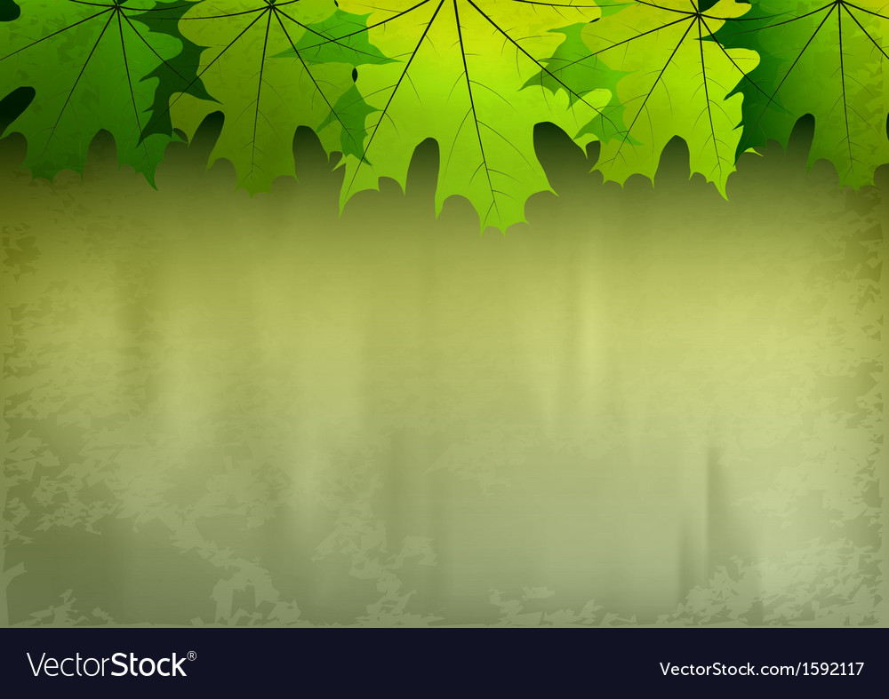Background autumn big top leaves green vector