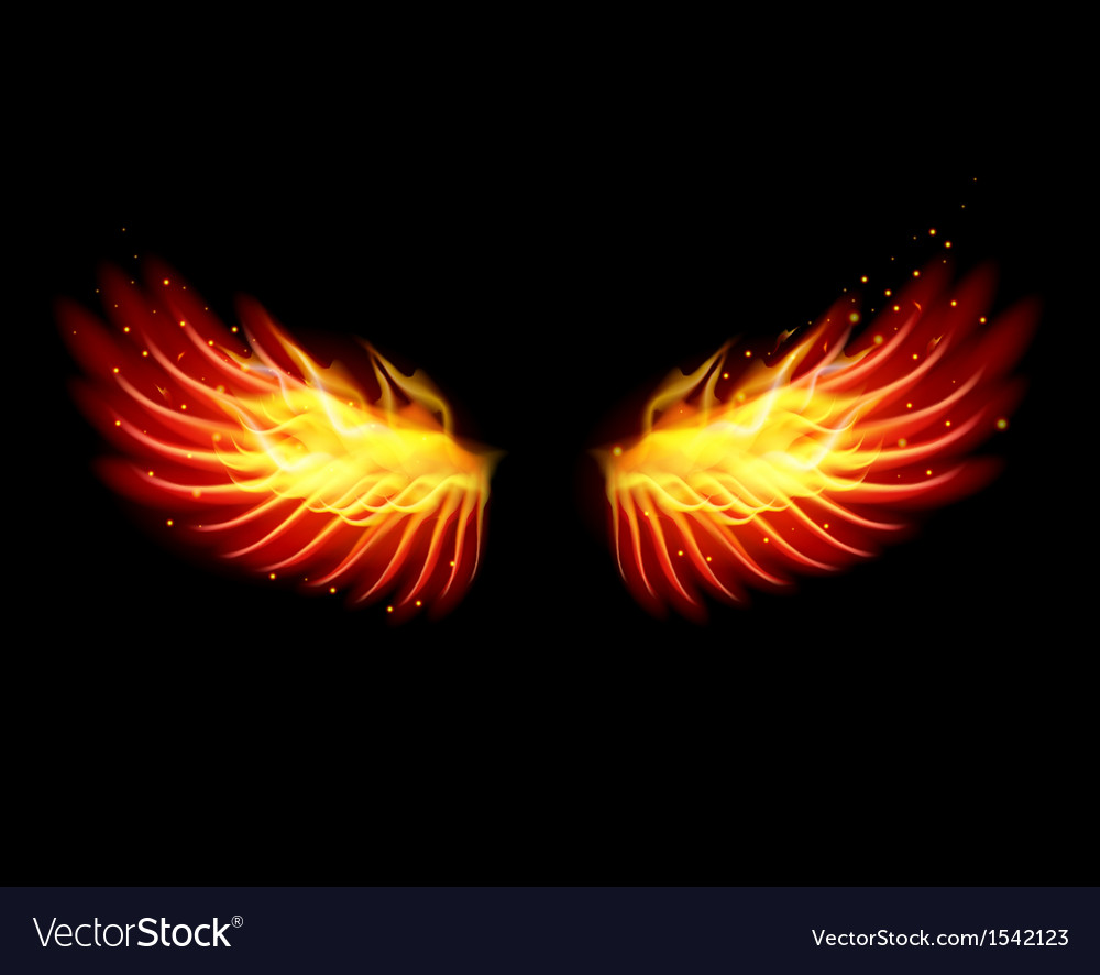 Wing in flame and fire vector