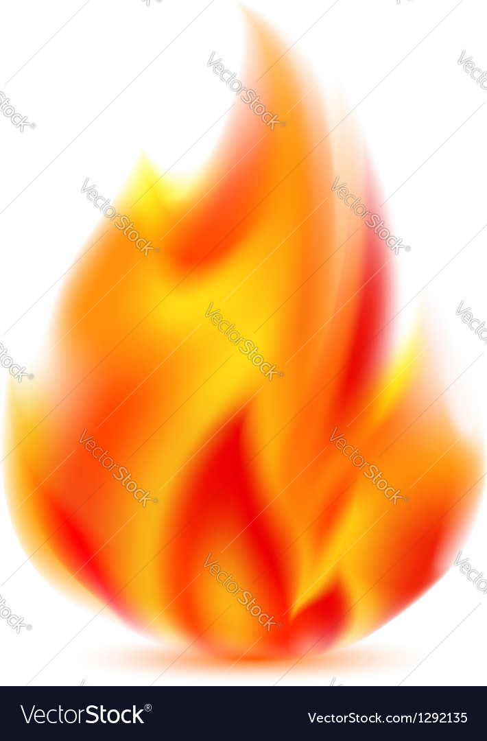 Fire bright flame on light background vector