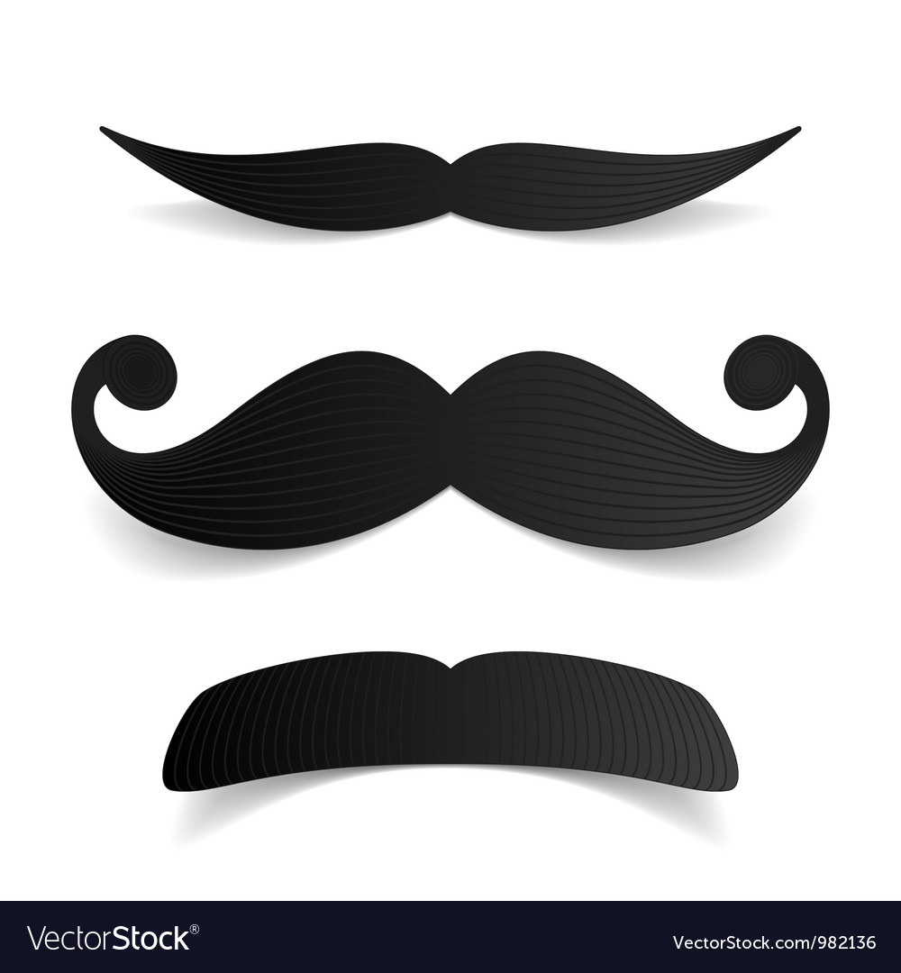 Mustaches vector