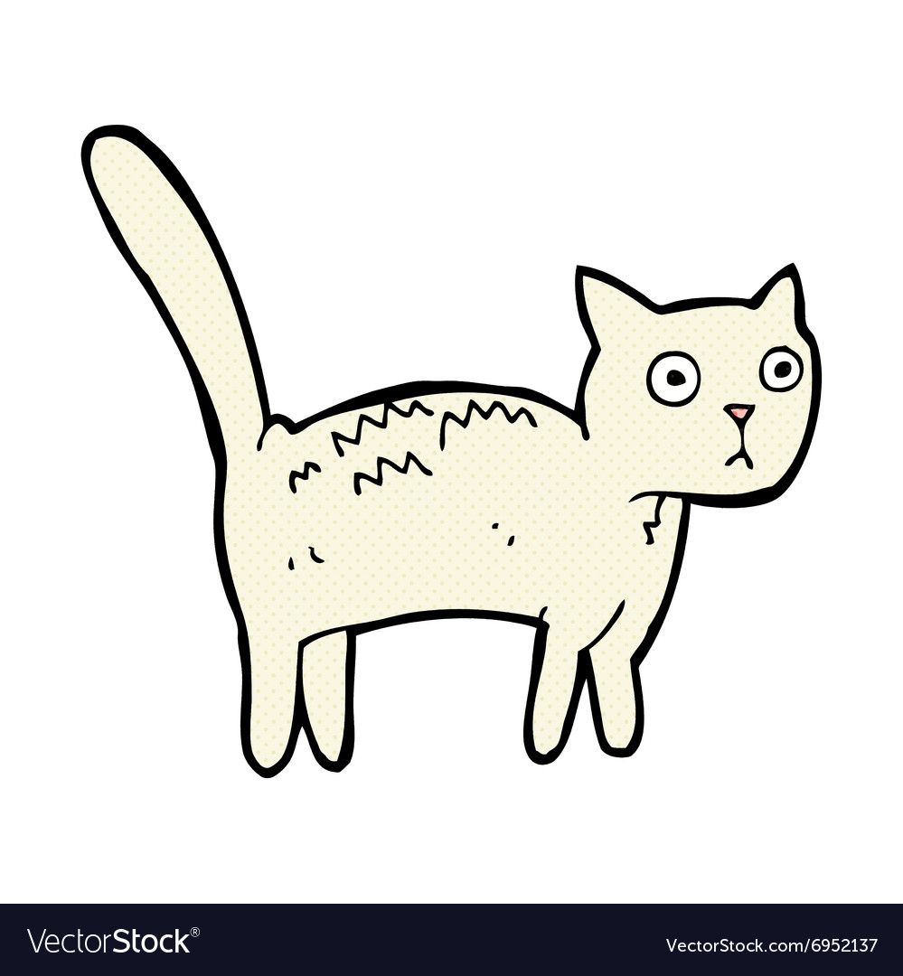 Comic cartoon frightened cat vector