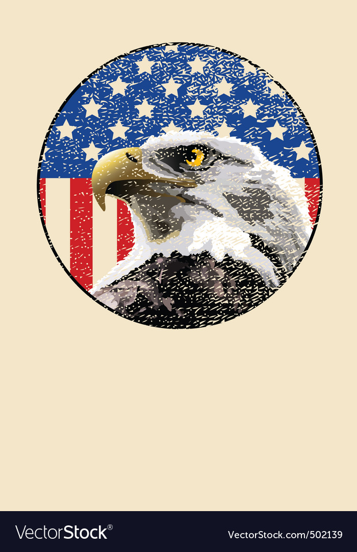 Bald eagle american flag vector