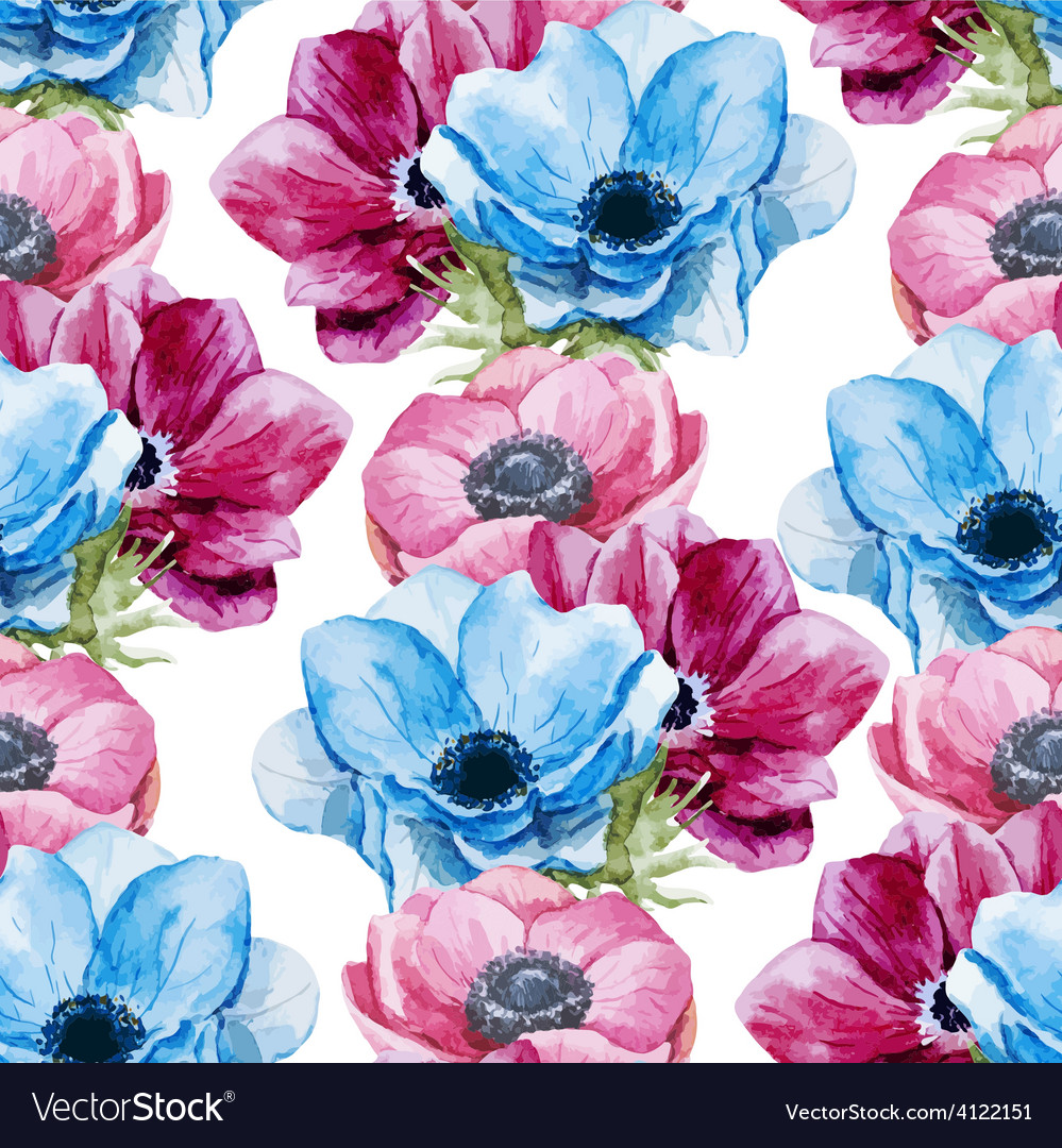Anemones flowers pattern vector