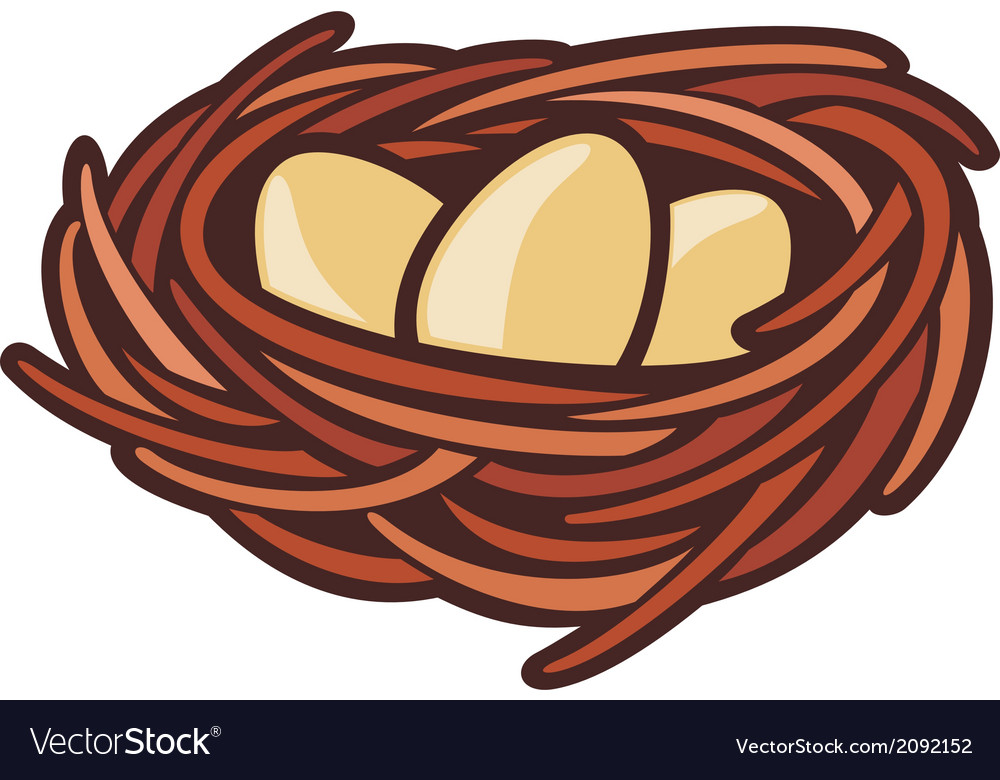 Eggs and nest vector