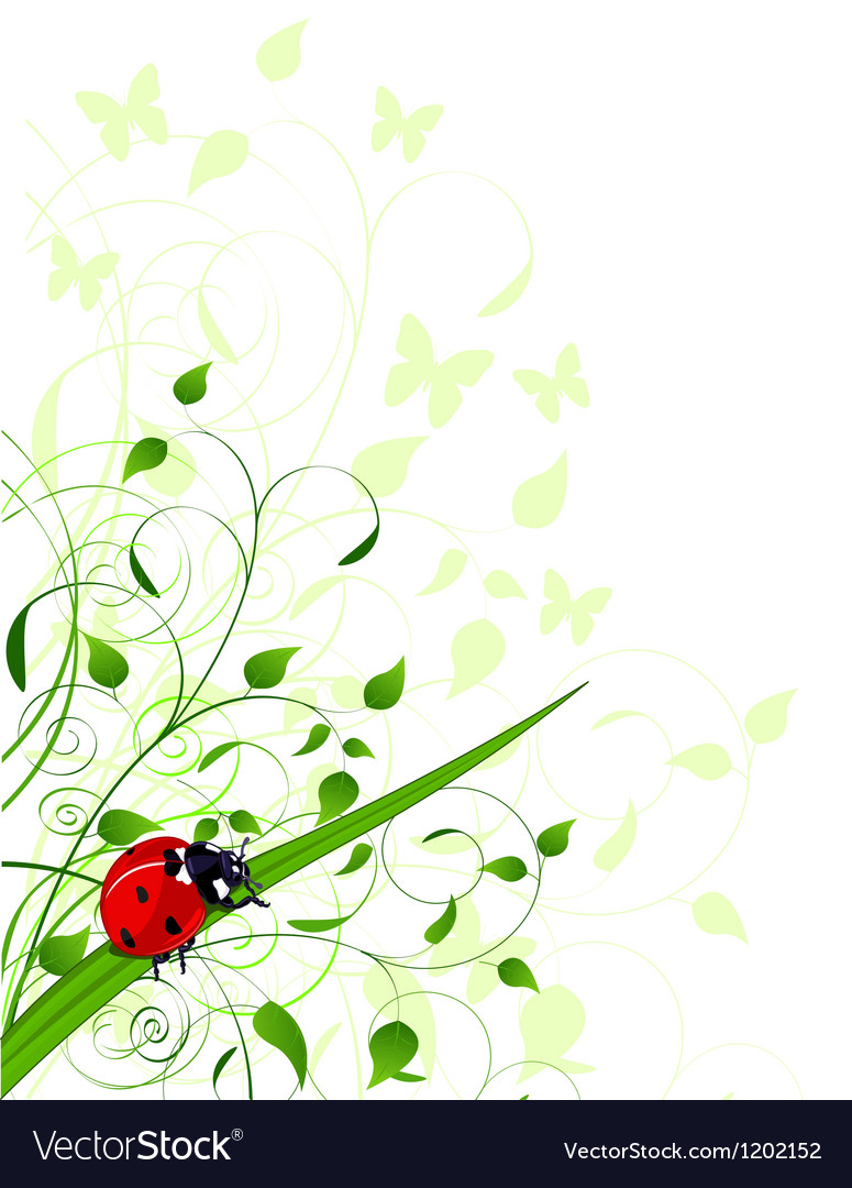 Spring background with ladybug vector