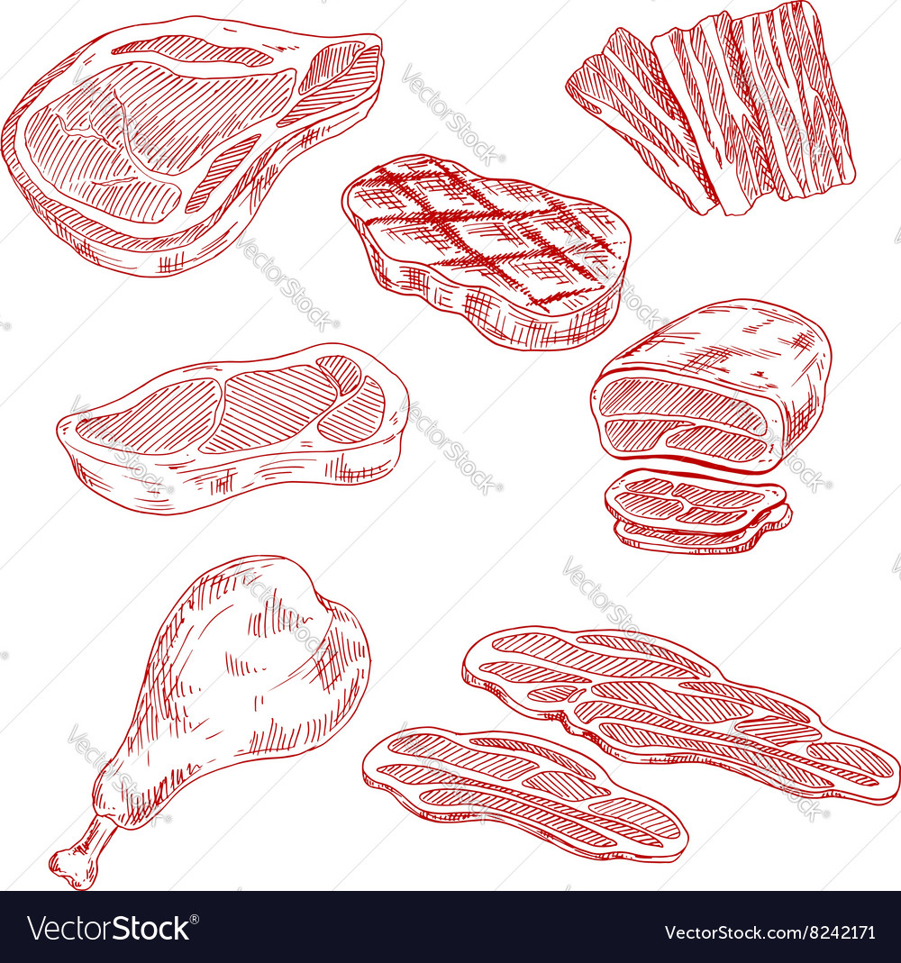 Bacon beef pork and chicken meat vector