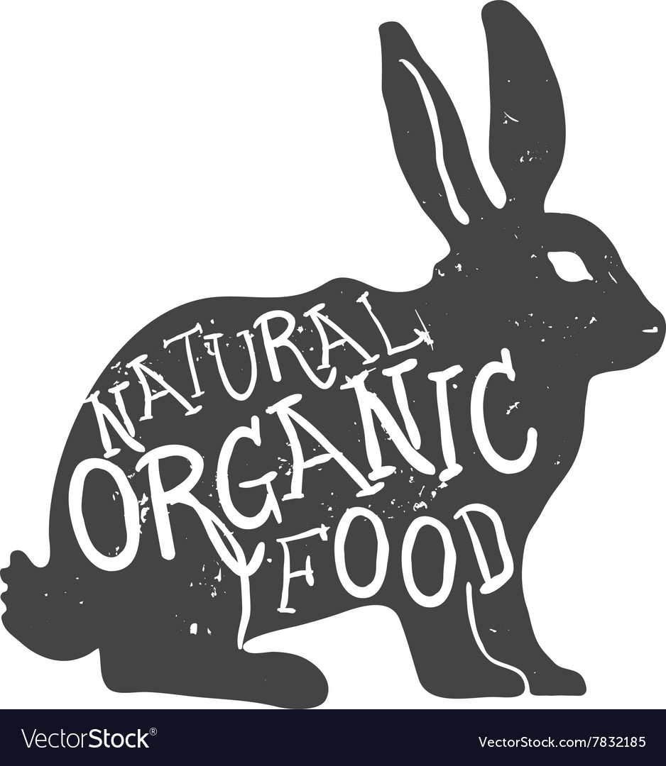 Hand drawn farm animal rabbit natural organic food vector