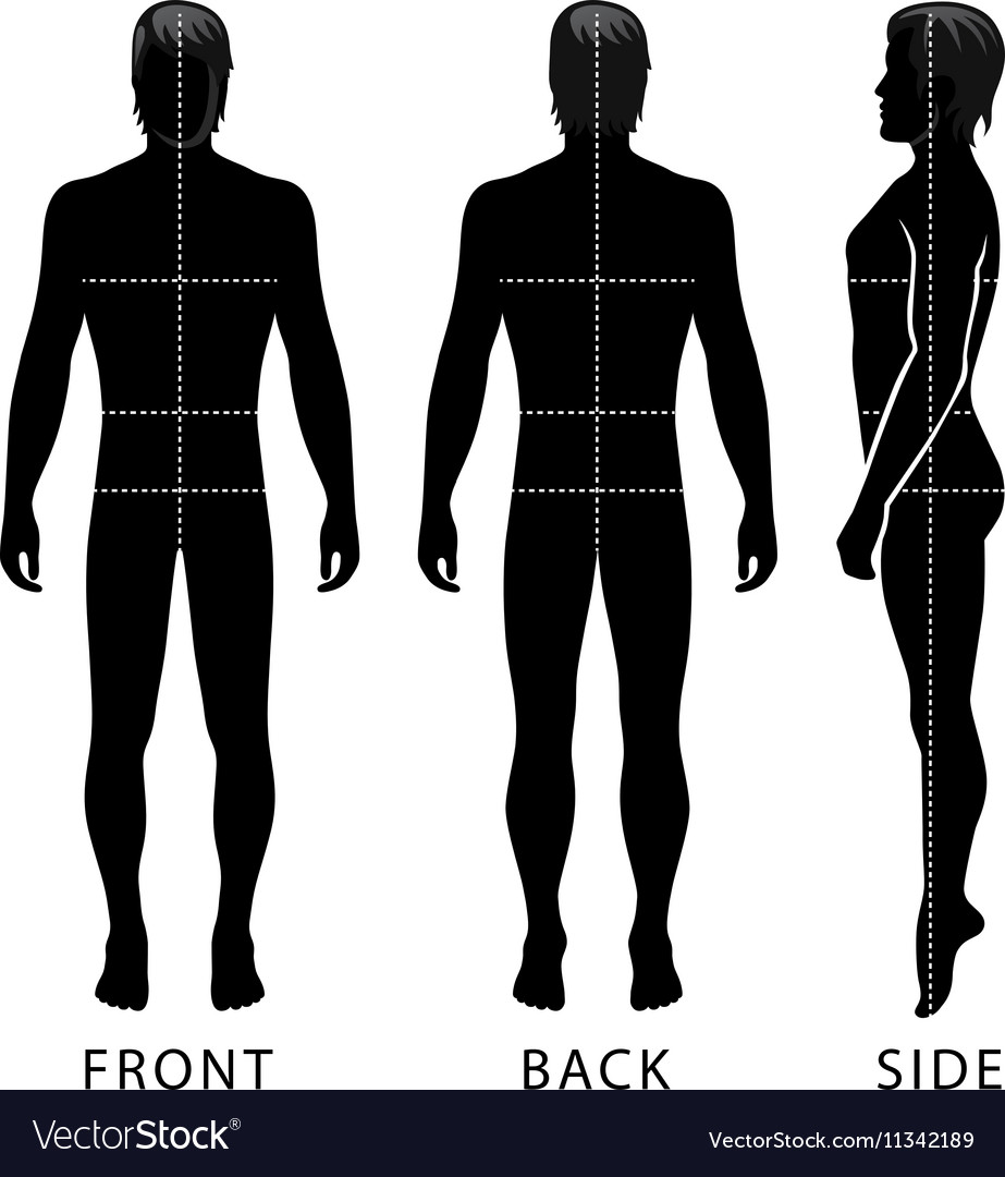 Fashion man full length template figure silhouette vector